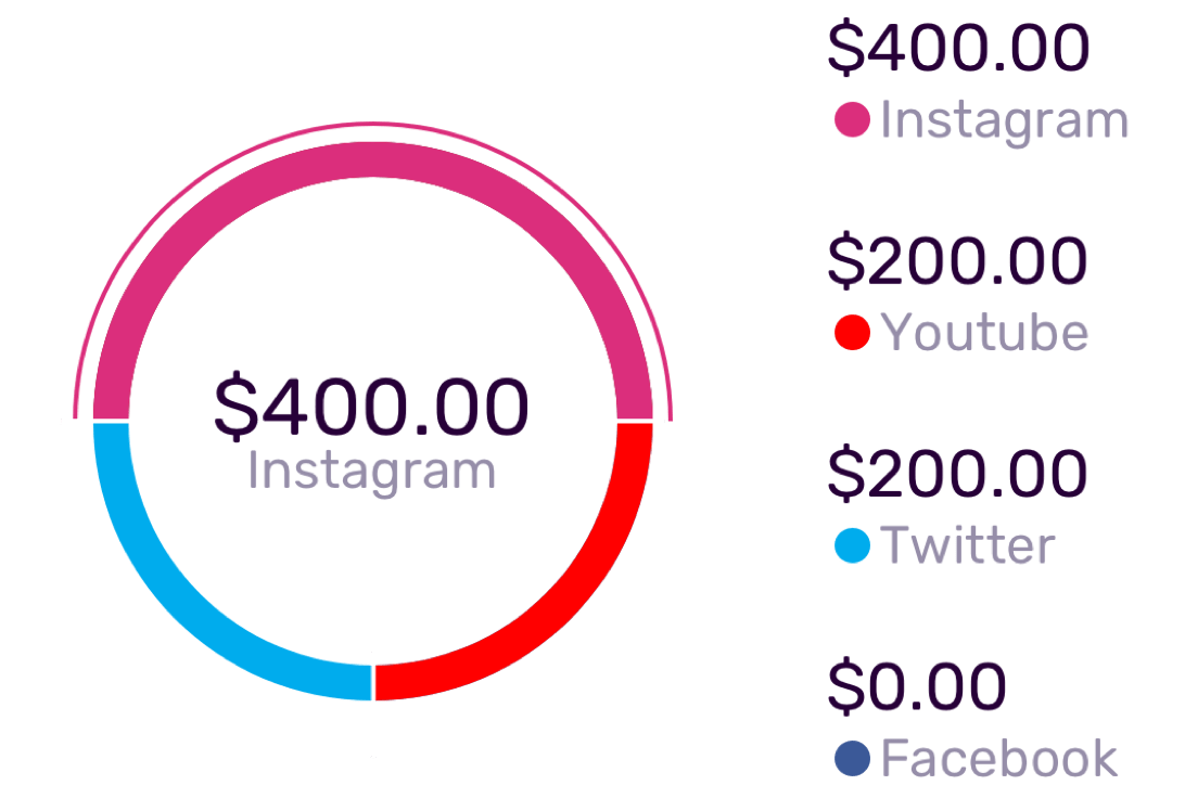 segment budget in social networks